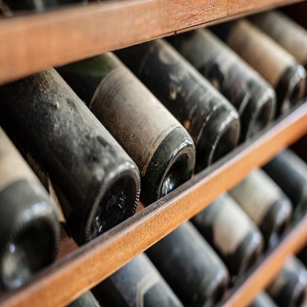 ancient wine bottles dusting in an underground cellar